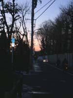 武蔵野の夕暮れ