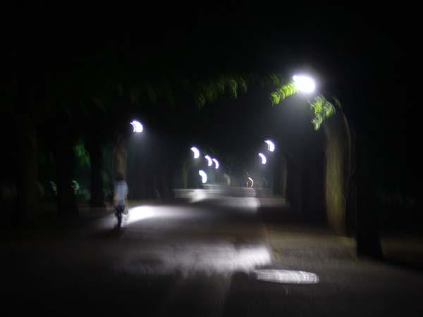 夜、自転車