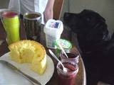 waku-breakfast