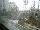あらし花見、雨の踏切