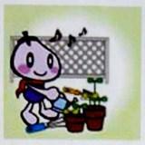 vegi-planter