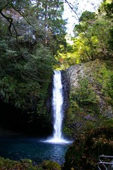 温泉ドライブ、浄蓮の滝実物