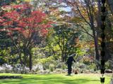 執事のいる風景、秋の庭