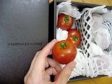 トマトです。