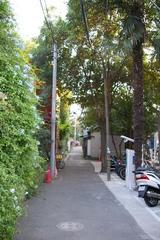 渋谷のはずれの小道