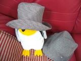 似てる?綿帽子