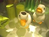 duckhead1